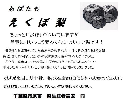 20100801nasi1_2