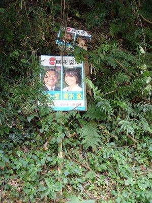 Ozawa2007a