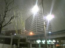 20110215g1
