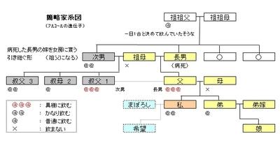Kakeizu2007t