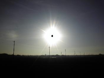 久々の太陽