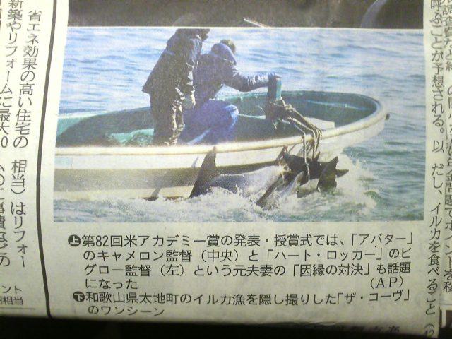 イルカの次はカンガルーと犬食なそうな?