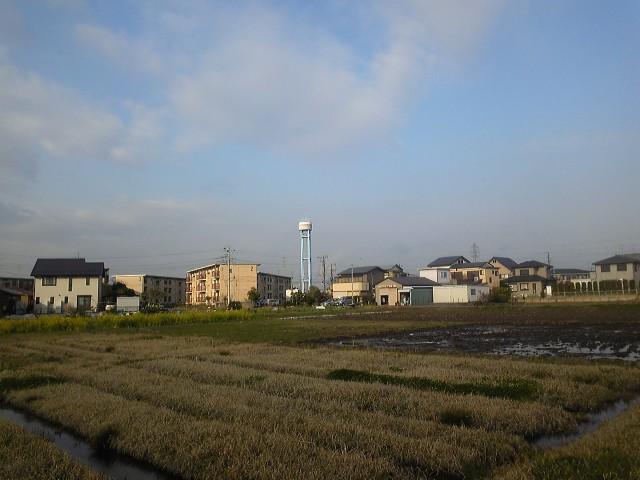 市原市から見た東京スカイツリー