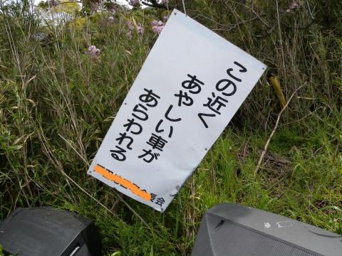 Ayasii2010a