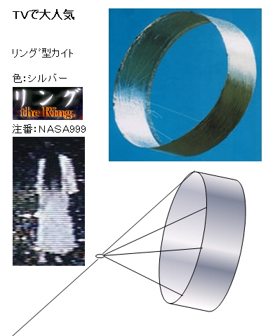 Ring2010a