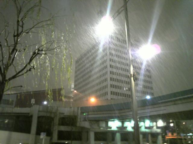 銀座に雪が降って来た